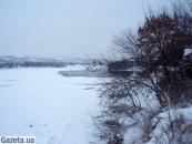 На Вінничині замерзає сотня лебедів