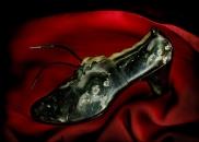 Вперше у Вінниці на стінах - копчена риба, свіжі яблука, старі черевики