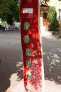 На деревах у Вінниці виросли ... прапори різних країн