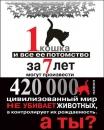 У суботу біля вежі відбудеться акція на захист безпритульних тварин