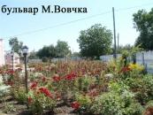 """Переможці конкурсу """"Зразкова садиба мікрорайону-2012"""""""