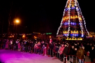 Конкурс «Новорічне Олів'є» зібрав майже пів міста у Центральному парку Вінниці