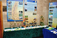 Як за один день у Вінницькому національному  аграрному університеті стало на 1000 студентів більше?