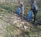 За десять днів зелені зони міста «звільнили» від 6 тисяч пакетів сміття