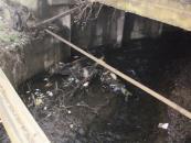 Майже 20 вантажівок побутового сміття вигорнули комунальники з русел малих річок після зими