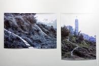 Актуальне мистецтво: криваві події лютого зафіксовано у роботах ленд-артистів з усього світу