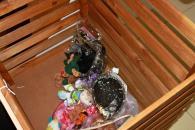 Вінницькі малята мріють про цукерки, м'ячі та санчата, втілити їхні бажання може кожен