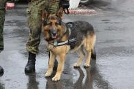 Дванадцять вінницьких правоохоронців вирушили в зону АТО