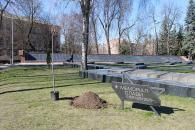 У Вінниці на Європейській площі висадили п'ять сакур в пам'ять героів, які віддали своє життя за Україну