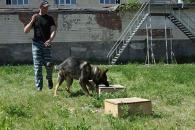 Вінницькі кінологи показали учням 34-ї школи, як працюють службові собаки