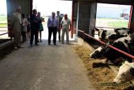 Сільське господарство в пріоритеті. Корівки СТОВ «Хлібороб» заробили більше 7 млн грн
