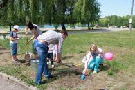 У парку Дружби народів з'явився сад з гліциній