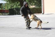 Діткам, які відпочивають у санаторії, вінницькі міліціонери показали, як працюють службові собаки