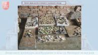 Археологи знайшли у Вінниці підземний хід, декілька поховань та частину торгової пломби