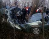 """На Вінниччині від зіткнення з деревом загинув водій """"Shevrolet"""""""