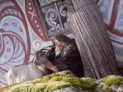 Відомий в Україні скульптор Олексій Альошкін перетворює хати у селі на Вінниччині на витвори мистецтва