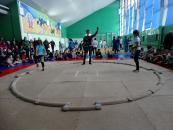 У Вінниці відбувся відкритий чемпіонат міста з сумо серед юнаків та дівчат до 14 років