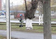 Підозріла сумка знову зупинила рух трамваїв у Вінниці