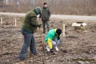 Вінницькі чиновники разом із юними лісівниками посадили два гектари лісу