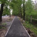 """Велоспільнота """"Velo_Vinnytsia"""" очистила від гілок велодоріжку по вулиці Пирогова"""