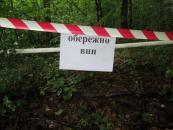 В Томашпільському районі у лісі виявили більше 4-х десятків снарядів