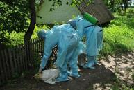 """В Калинівському районі ліквідовували наслідки """"африканської чуми свиней"""""""