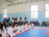 У Вінниці відбулись змагання каратистів