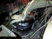 У Вінниці через негоду на три автомобілі впало дерево