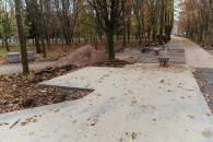 У парку Дружби народів буде нова алея з велодоріжкою, лавками та освітленням