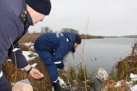 Молодого лебедя, якого рятувальники дістали з крижаної води, передали до зоодворика