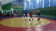 У Вінниці відбувся відкритий чемпіонат з вільної боротьби