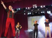 Гуморина у Вінниці: Не я б'ю — верба б'є