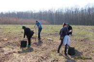 Посадовці Вінницької ОДА разом зі школярами висаджували ліс
