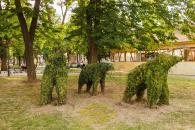 В центрі Вінниці з'явилось сімейство слонів
