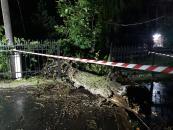 Зірвані дахи та повалені дерева: результат сильного пориву вітру на Вінниччині