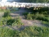 """Завдяки інформації від відвідувачів сайту """"Моя Вінниця"""" у місті під час весняних суботників було ліквідовано 9 стихійних сміттєзвалищ"""
