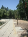 "Сьогодні реконструйовано ""лебедине озеро"" в Центральному парку"