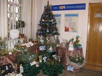 Виставка новорічних композицій
