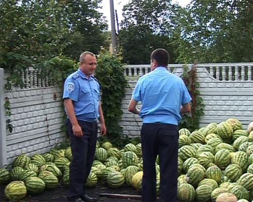 13 490 кг кавунів непридатних для вживання не потрапили до столу жителів міста Вінниці