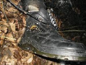 На автошляху Могилів Подільський – Бердичів виявлено залишки обгорілого трупа невідомого чоловіка