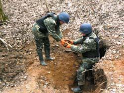 Більше двохсот боєприпасів часів другої світової війни виявили піротехніки на Вінниччині