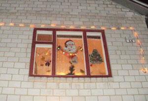 Рудик Раїса (Краще новорічне вікно)