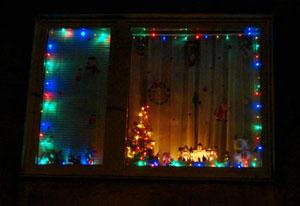 Паславська Людмила (Краще новорічне вікно)