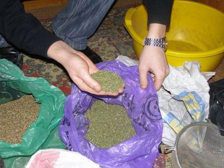 1 кг марихуанни