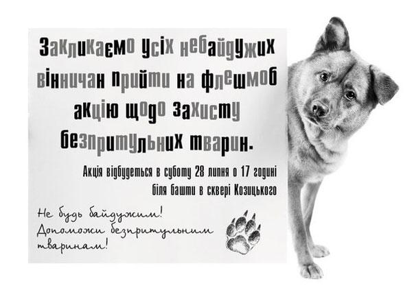 Флешмоб акція щодо захисту безпритульних тварин