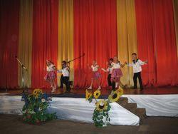 Концерти на святкувані дня народження Козятина