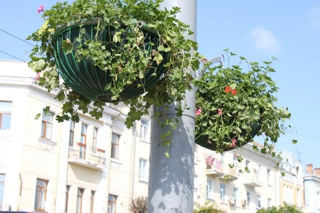 озеленення міста