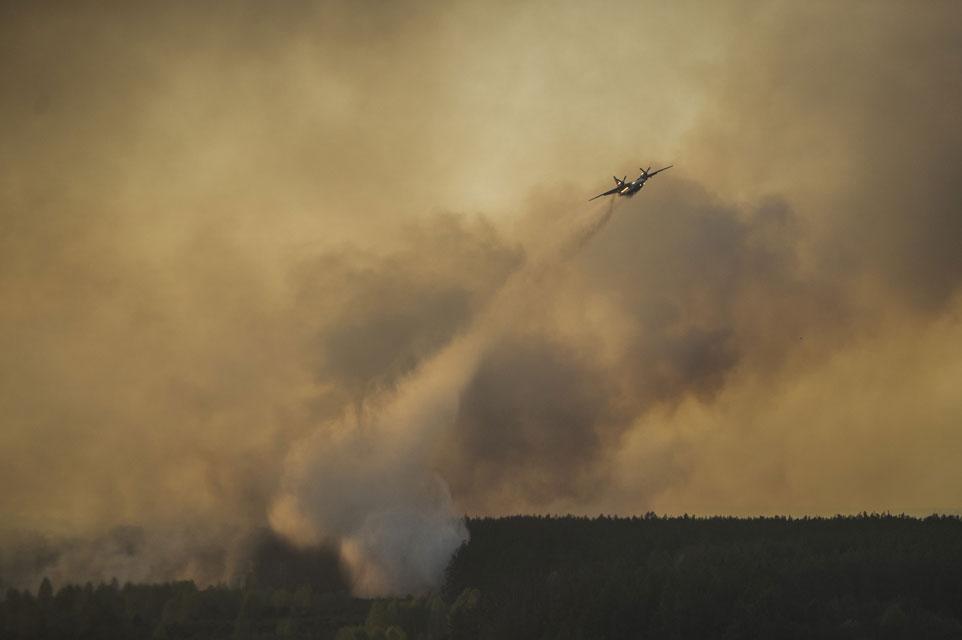 Пожежа у Чорнобильському лісі