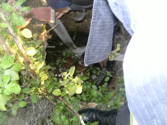 На Вінниччині рятувальники діставали із криниці теля