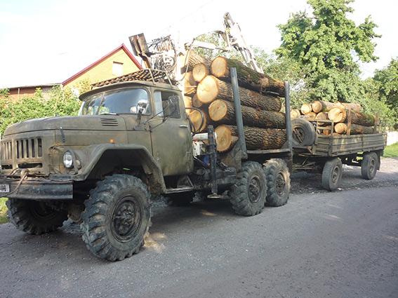 На Вінниччині зупинили авто, яке перевозило незаконно зрубаний дуб